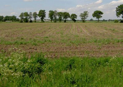 Ede - Advisering bij planvorming nieuw agrarisch bedrijf - De Vernieuwers